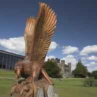 The Stobo Eagle