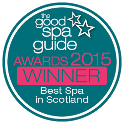 GSG Awards 2015 Winner BAdge